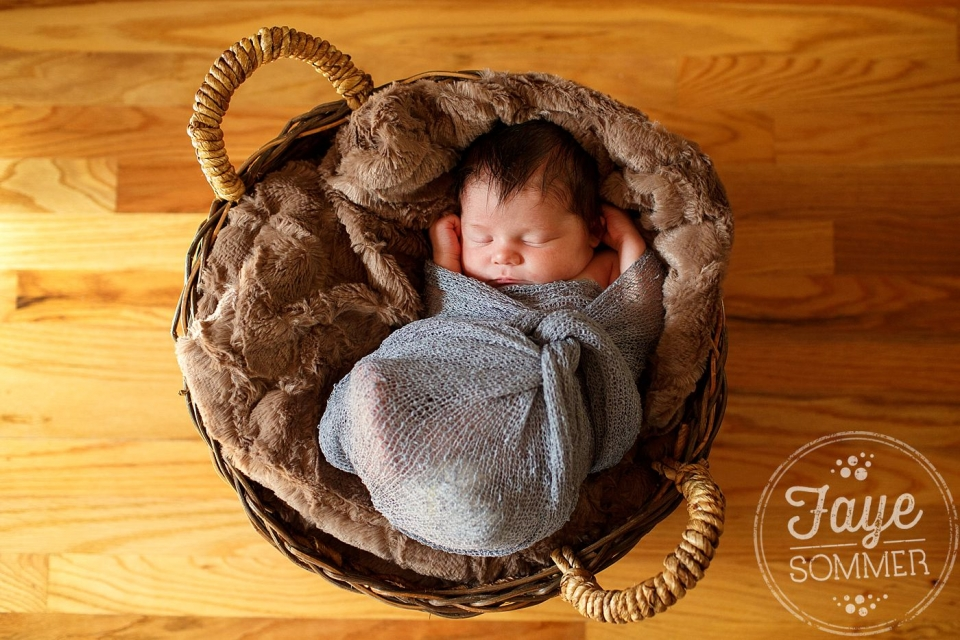 dayton newborn photographer captures baby